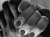 """6° Tema Fisso bianco/nero Mori Laura """"Insieme di mani"""""""